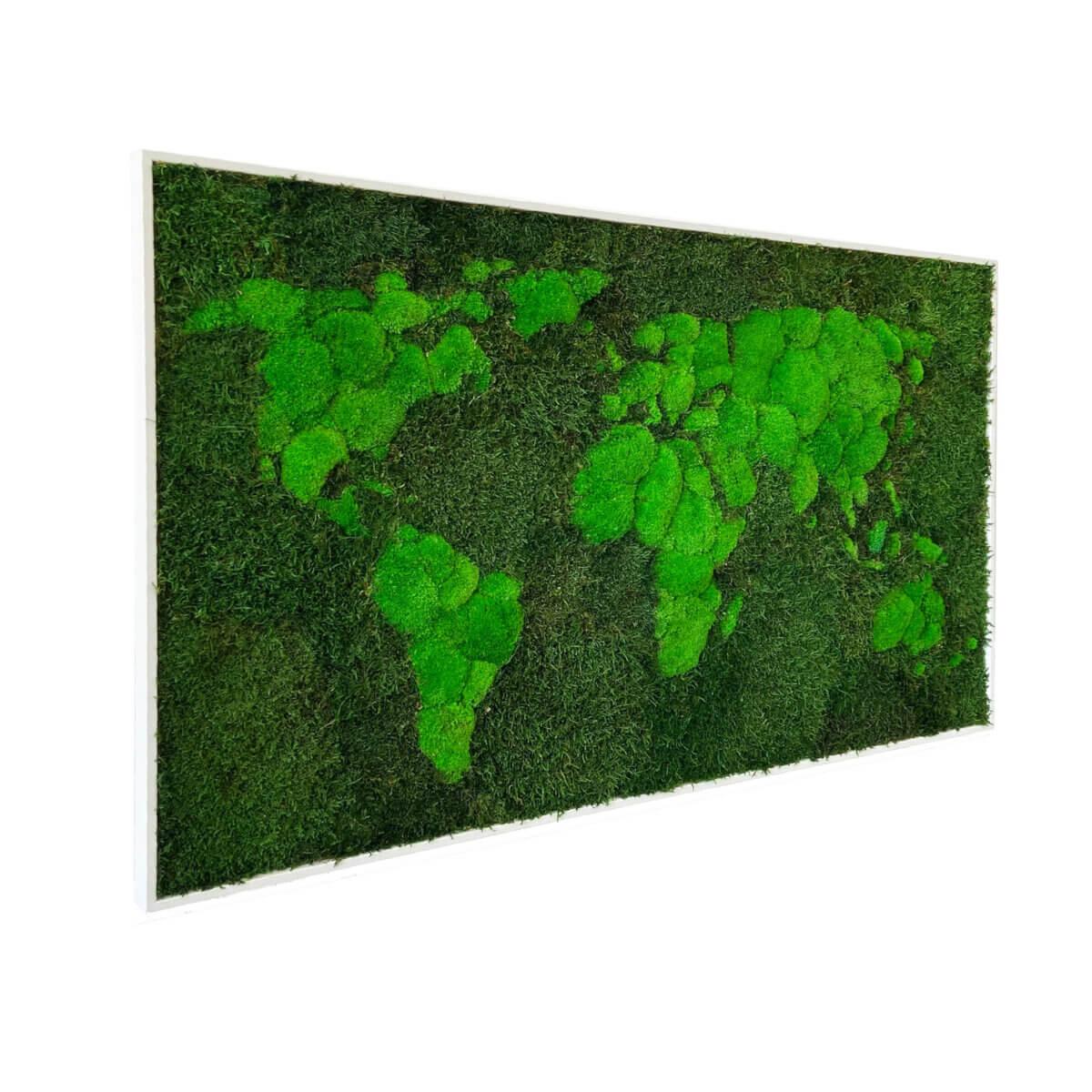 Moss World Map - organic lichen